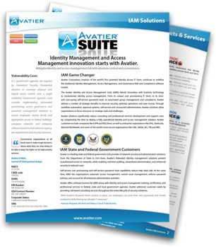 Government GSA Capabilities Statement Featuring Automated User Provisioning Workflow